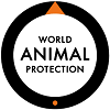 Vacature Online Marketeer bij World Animal Protection in Den Haag